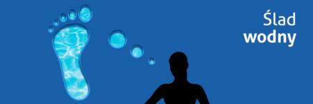 Obraz przedstawia symboliczną postać kobiety, od której odchodzi chmurka myślowa. Chmurka ma kształt śladu stopy. W chmurce wpisane jest zdjęcie tafli wody. Na górze napis: Ślad wodny.